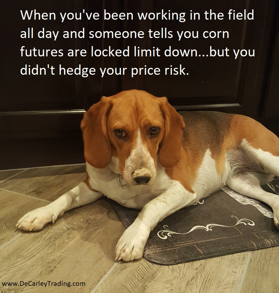 Hedge Farm and Ranch Operation Price Risk with Futures and Options