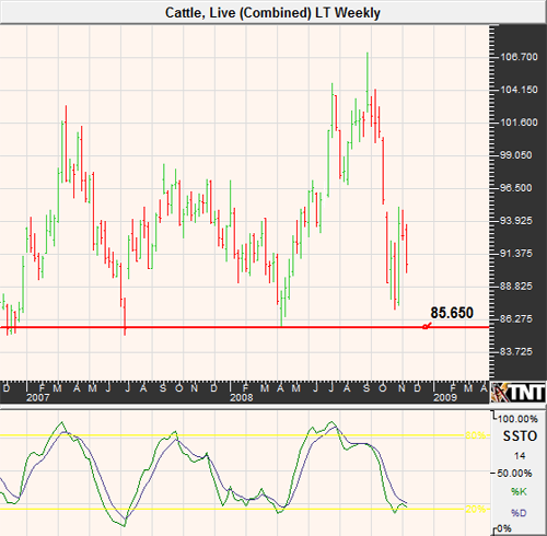 Live Cattle Futures Chart November 2008
